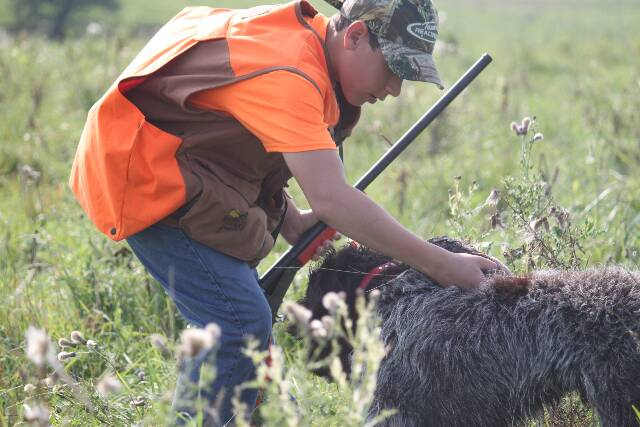 """""""Testing?  No thanks, I just want a Hunting Dog!"""""""