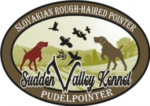 Sudden Valley Kennels